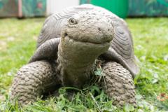July 29, 2021:  Sen. Cappelletti tours Elmwood Park Zoo